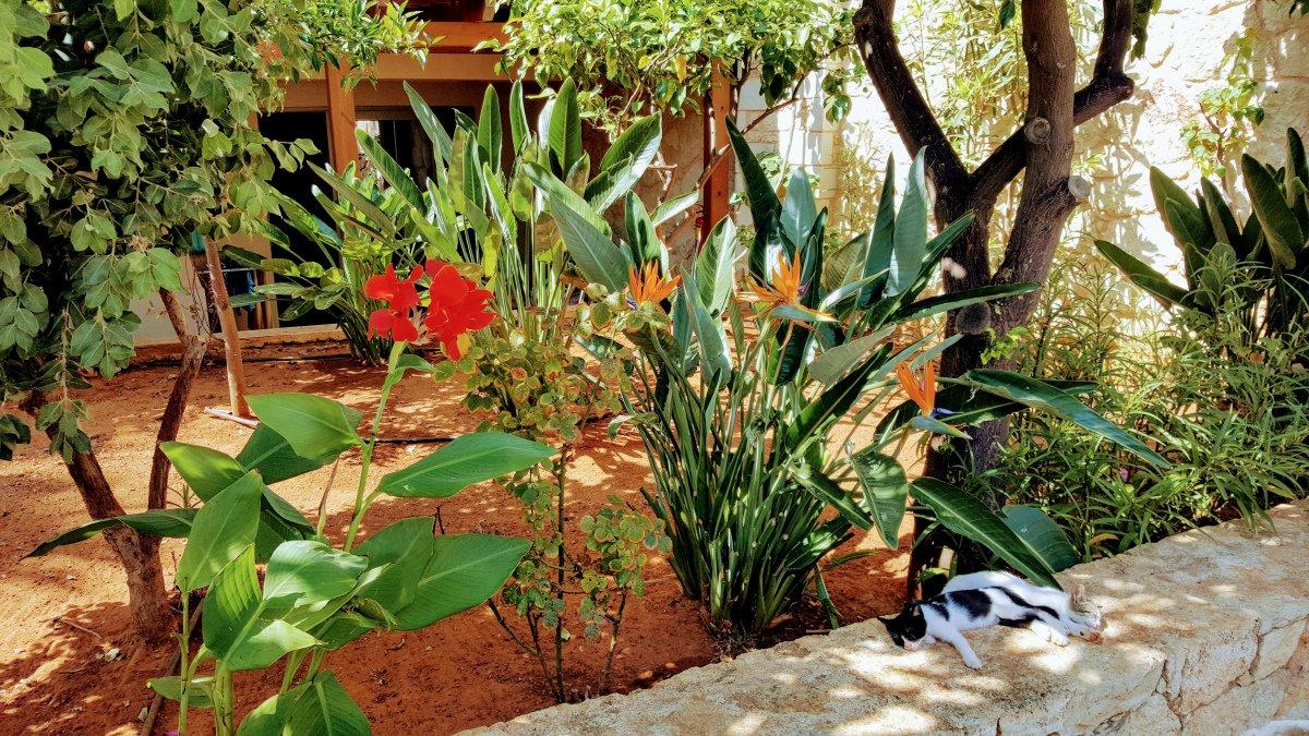für Gundel: Sommer auf Kreta